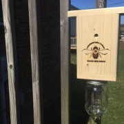 carpenter-bee-trap
